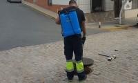 FINALIZA LA FUMIGACIÓN EXTRAORDINARIA CONTRA PLAGAS DE INSECTOS DE JUNIO